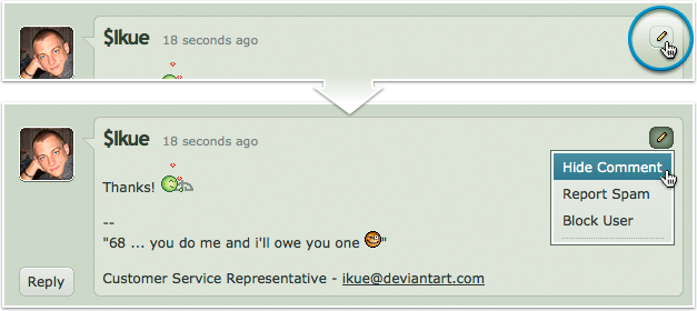 Can I Remove Or Delete Comments On My Userpage Journal Or
